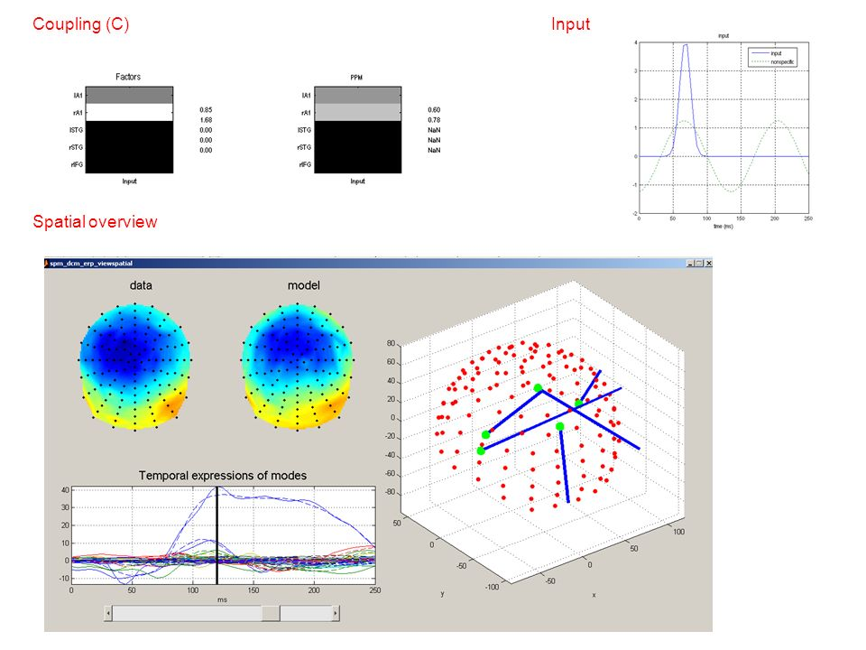 Coupling (C) Input Spatial overview