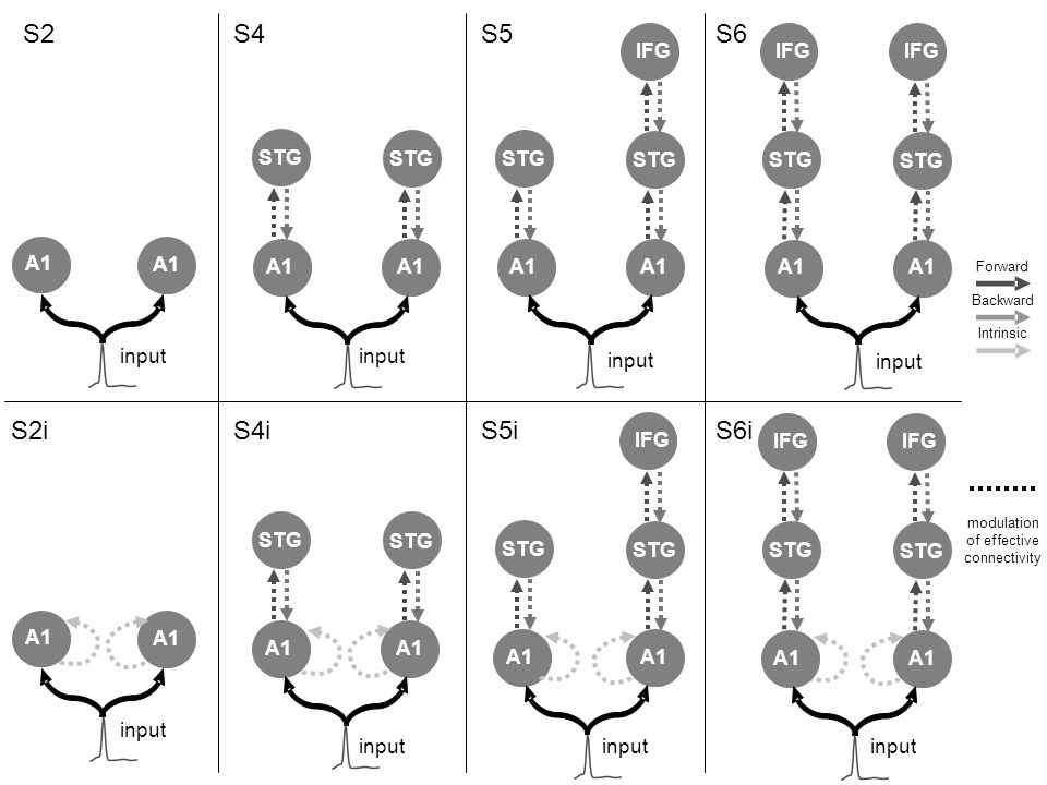 modulation of effective connectivity