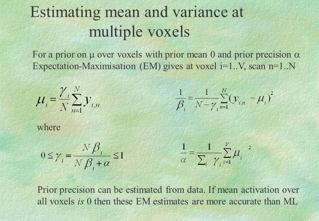 Estimating mean and variance at multiple voxels