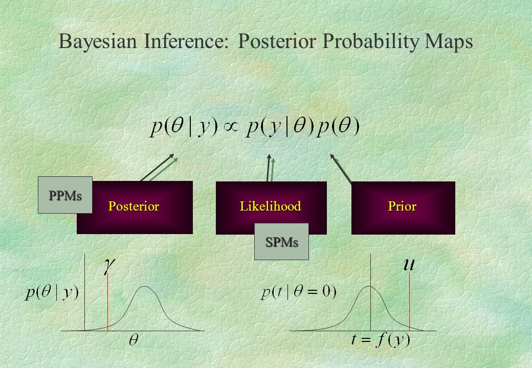 Bayesian Inference: Posterior Probability Maps