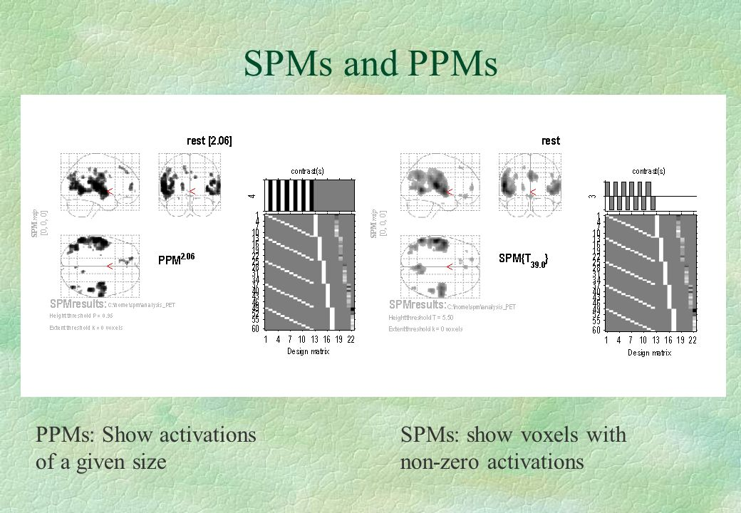 SPMs and PPMs PPMs: Show activations of a given size