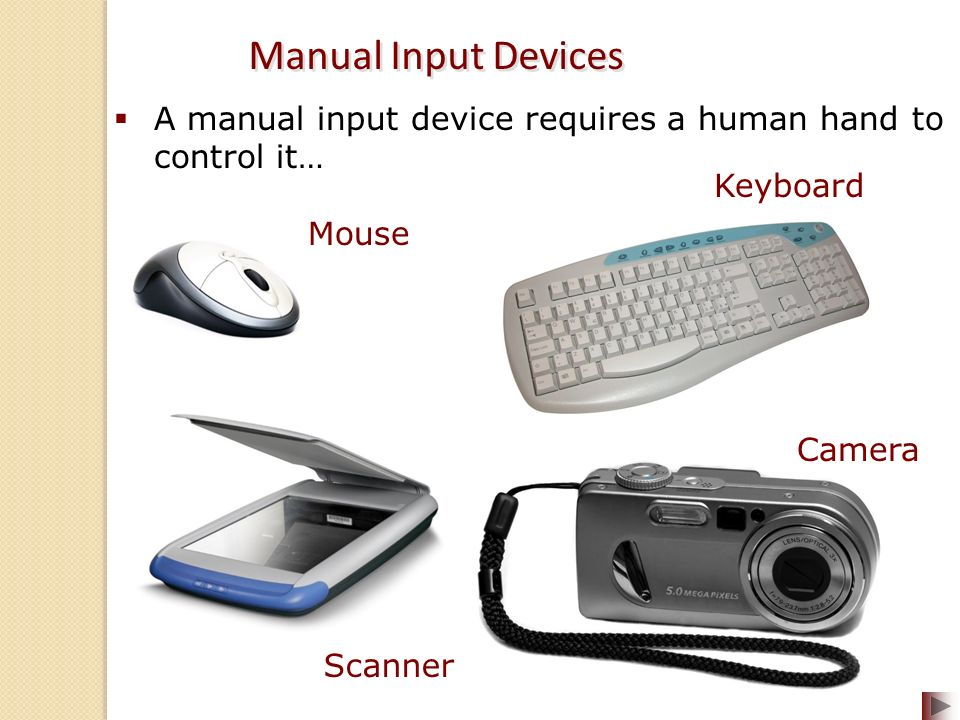 8 input devices for computers Devices quiz revise computer science gcse by testing your knowledge of  input devices using our quiz  quiz: input devices time limit: 0  question 1 of  8.