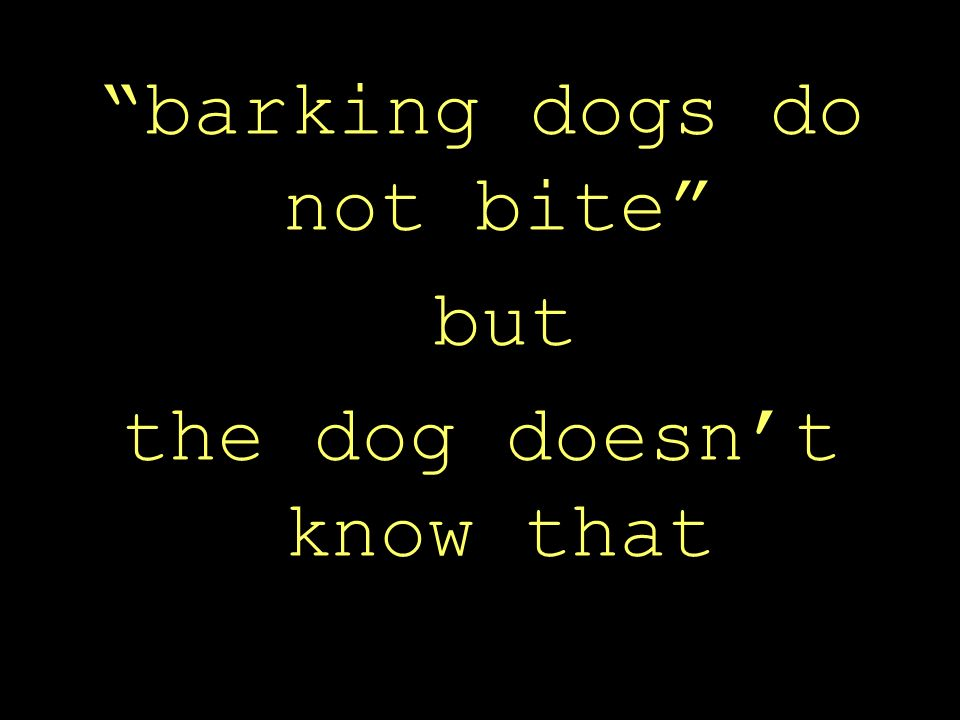 barking dogs do not bite but the dog doesn't know that