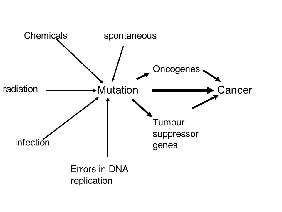 Mutation Cancer Chemicals spontaneous Oncogenes radiation