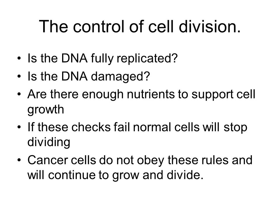 The control of cell division.