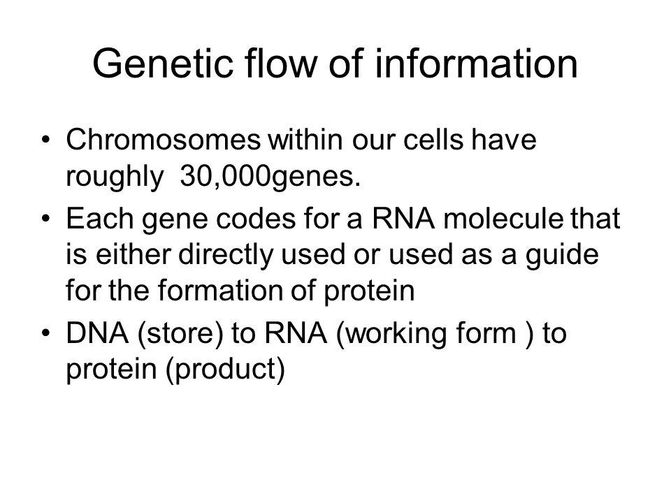 Genetic flow of information