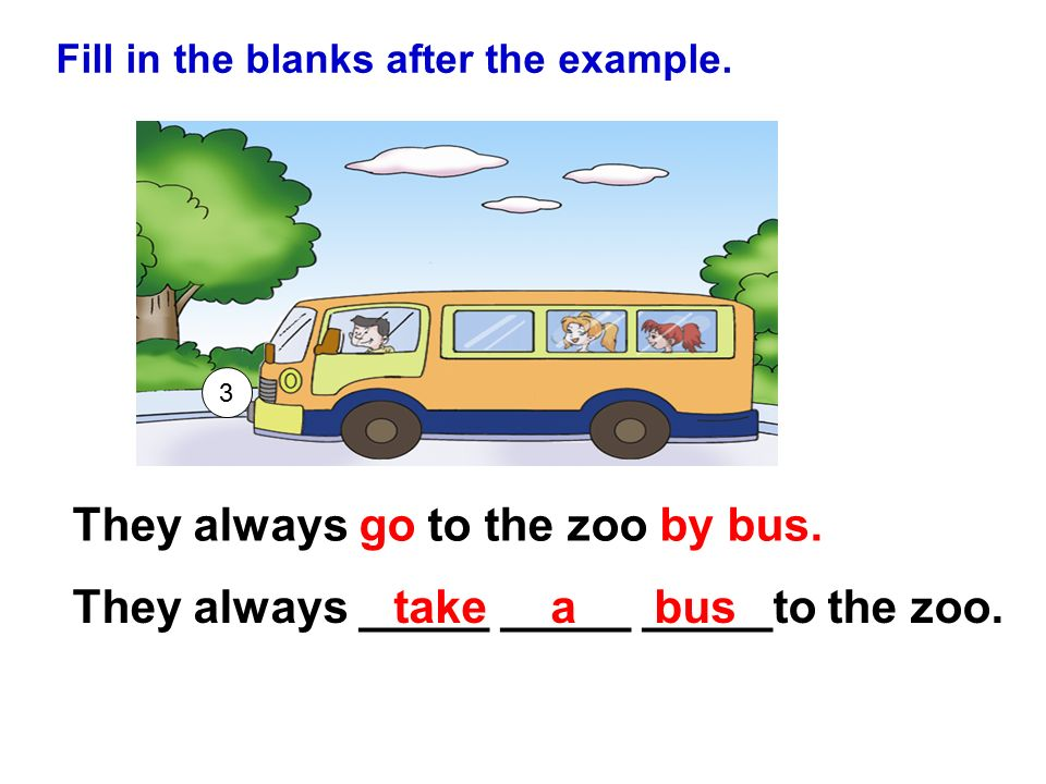 They always go to the zoo by bus.