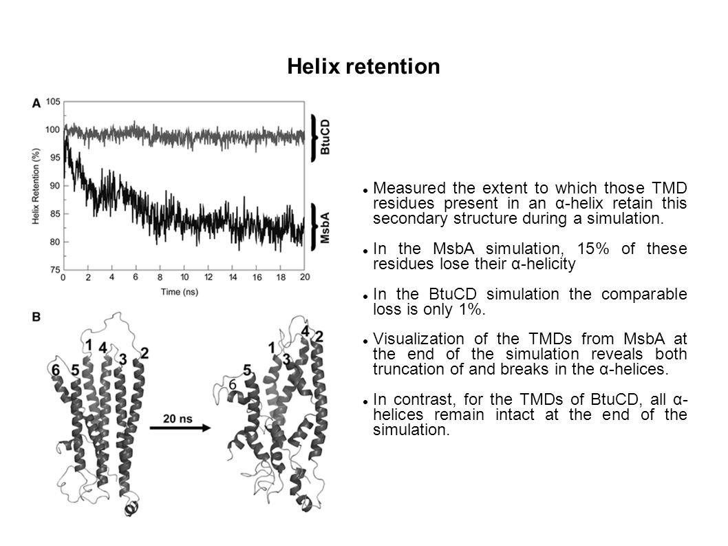Helix retention Measured the extent to which those TMD residues present in an α-helix retain this secondary structure during a simulation.