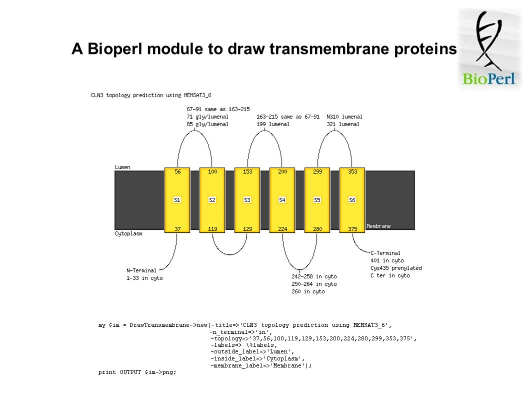 A Bioperl module to draw transmembrane proteins