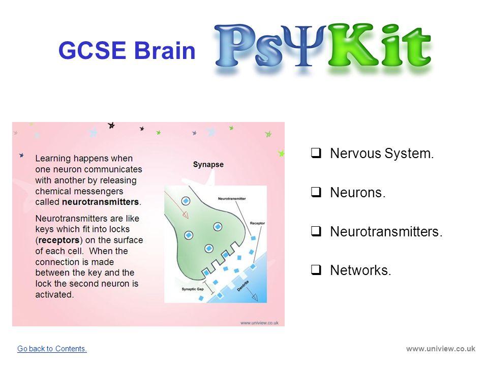 GCSE Brain Nervous System. Neurons. Neurotransmitters. Networks.