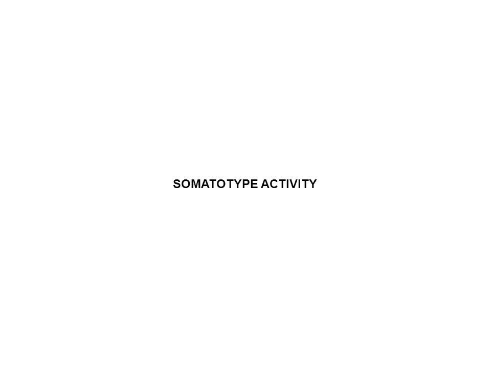 SOMATOTYPE ACTIVITY SOMATOTYPE ACTIVITY