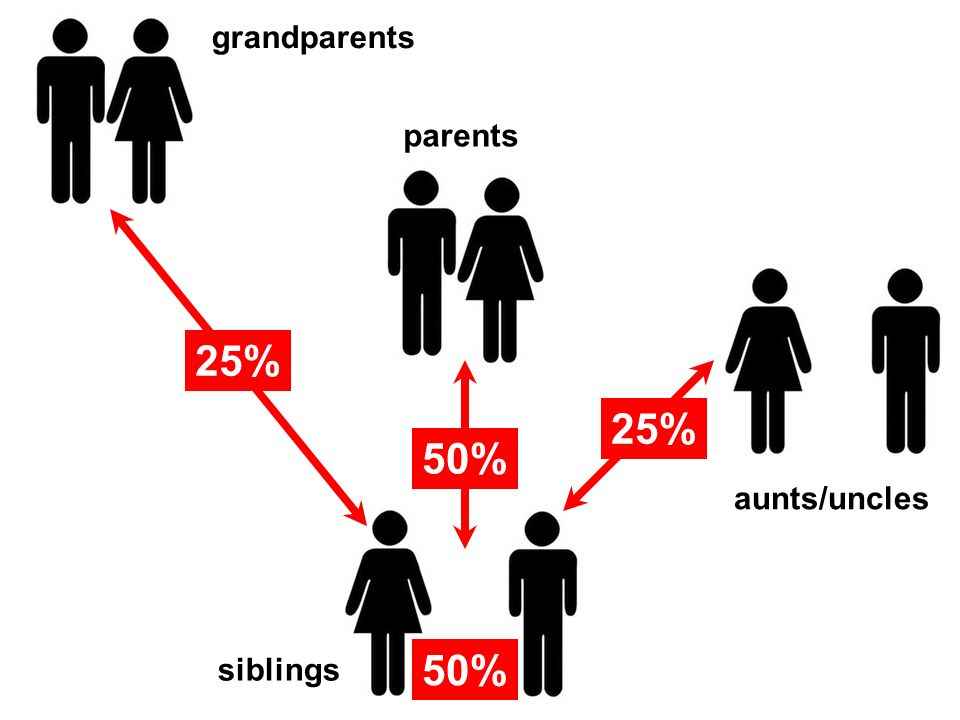 grandparents parents 25% 25% 50% aunts/uncles siblings 50%