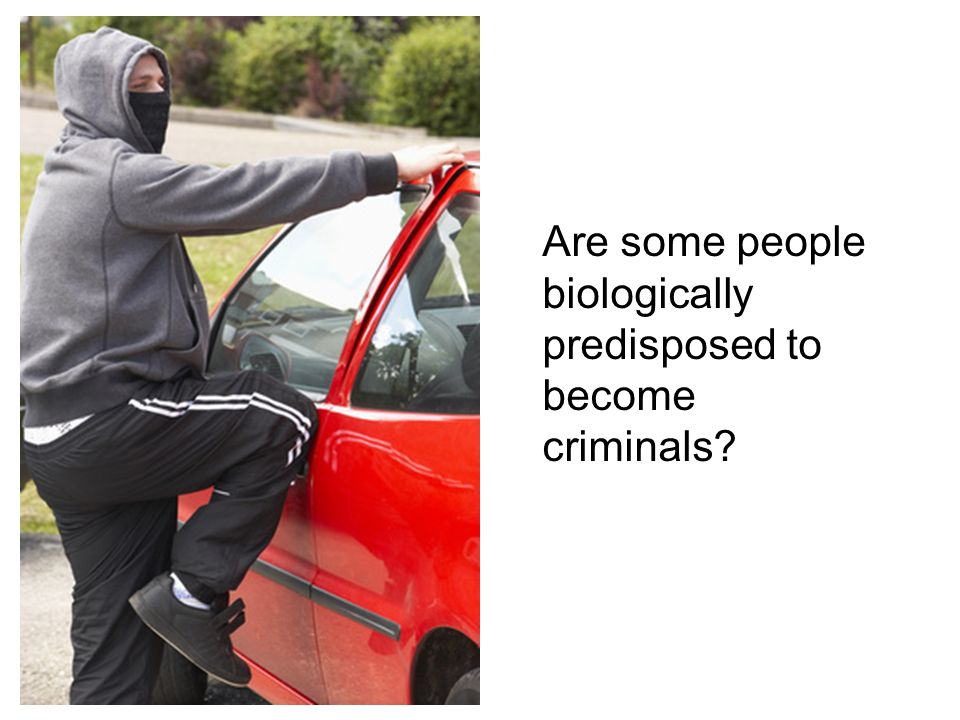 Are some people biologically predisposed to become criminals