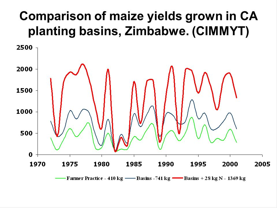 Comparison of maize yields grown in CA planting basins, Zimbabwe
