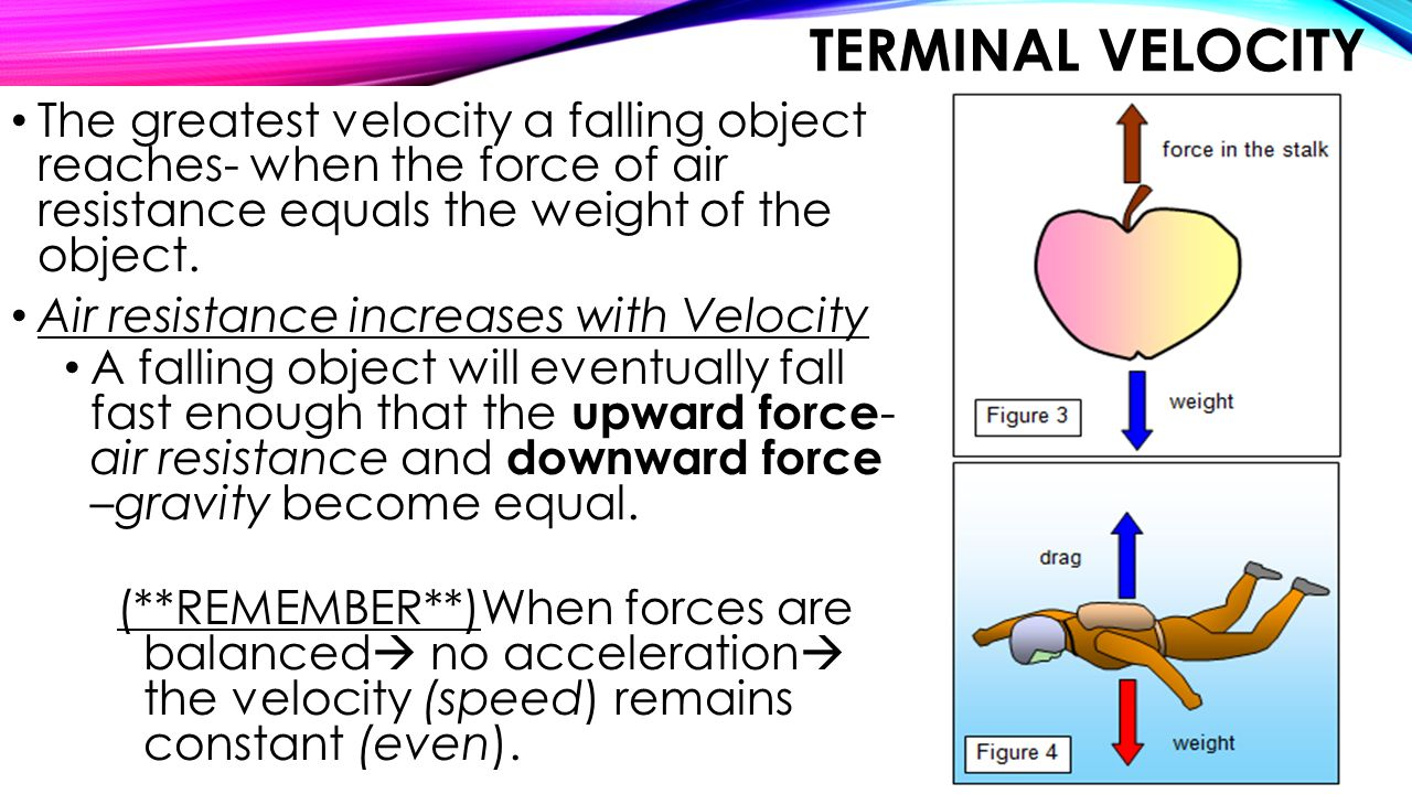 Terminal Velocity The greatest velocity a falling object reaches- when the force of air resistance equals the weight of the object.