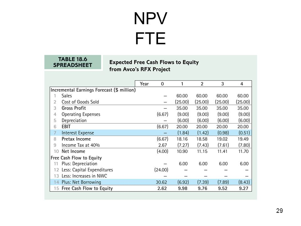 NPV FTE