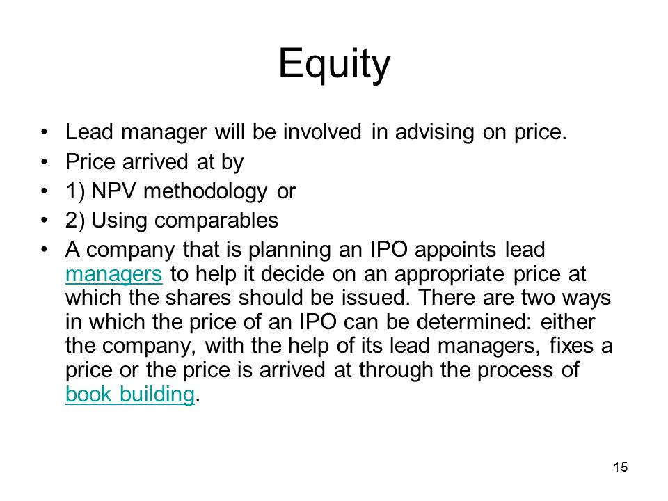 Equity Lead manager will be involved in advising on price.