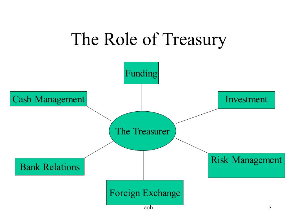 The Role of Treasury Funding Cash Management Investment The Treasurer