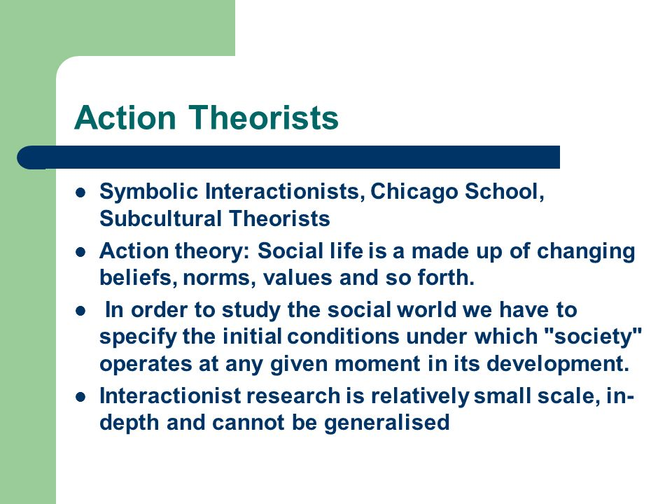 Action Theorists Symbolic Interactionists, Chicago School, Subcultural Theorists.