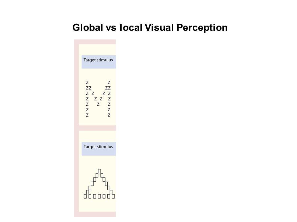 Global vs local Visual Perception