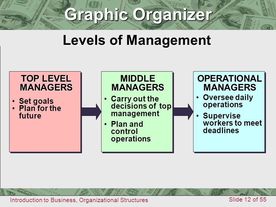Graphic Organizer Graphic Organizer Levels of Management TOP LEVEL