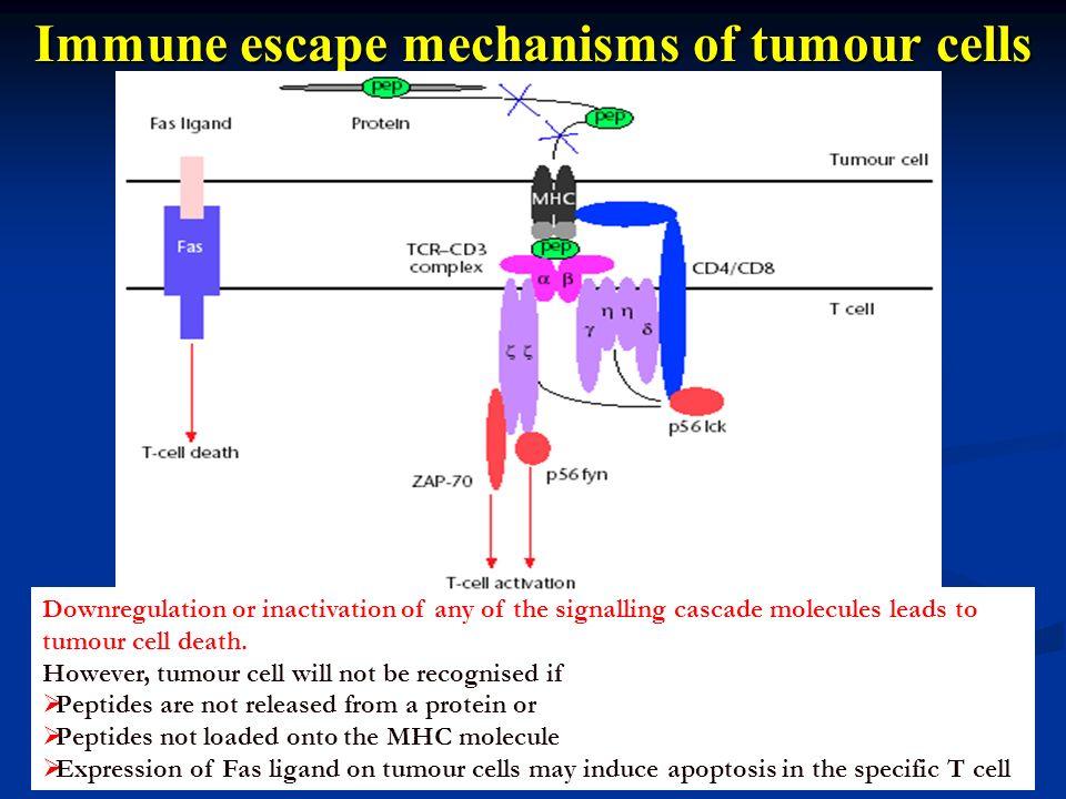 Immune escape mechanisms of tumour cells
