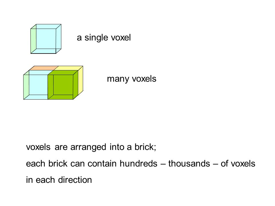a single voxel many voxels. voxels are arranged into a brick; each brick can contain hundreds – thousands – of voxels.