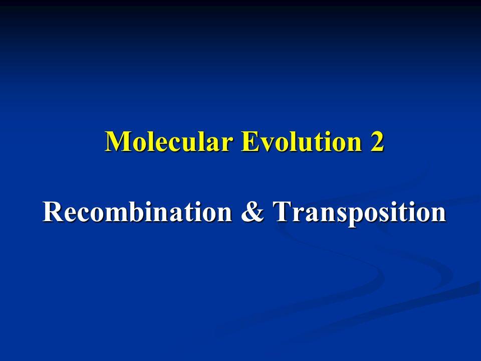 Molecular Evolution 2 Recombination & Transposition
