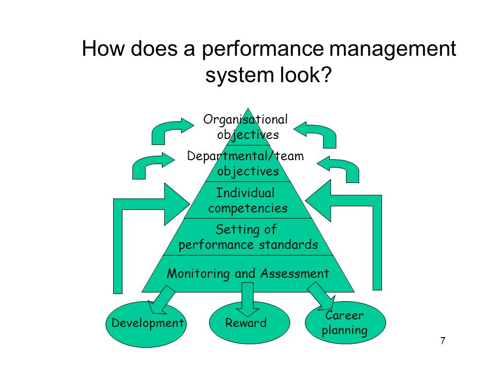 How does a performance management system look