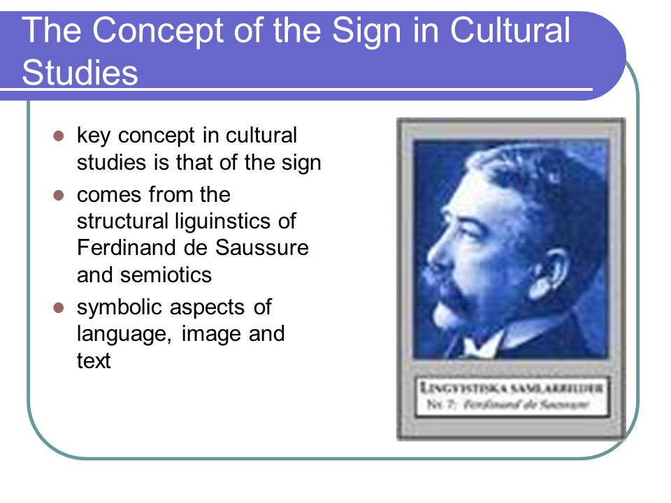 The Concept of the Sign in Cultural Studies