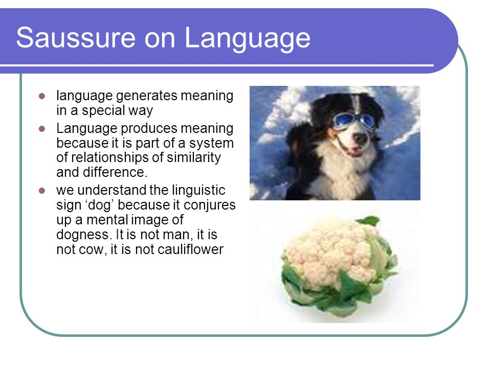 Saussure on Language language generates meaning in a special way