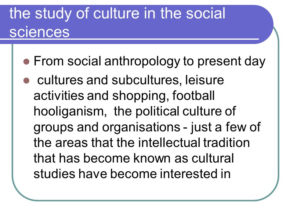 the study of culture in the social sciences