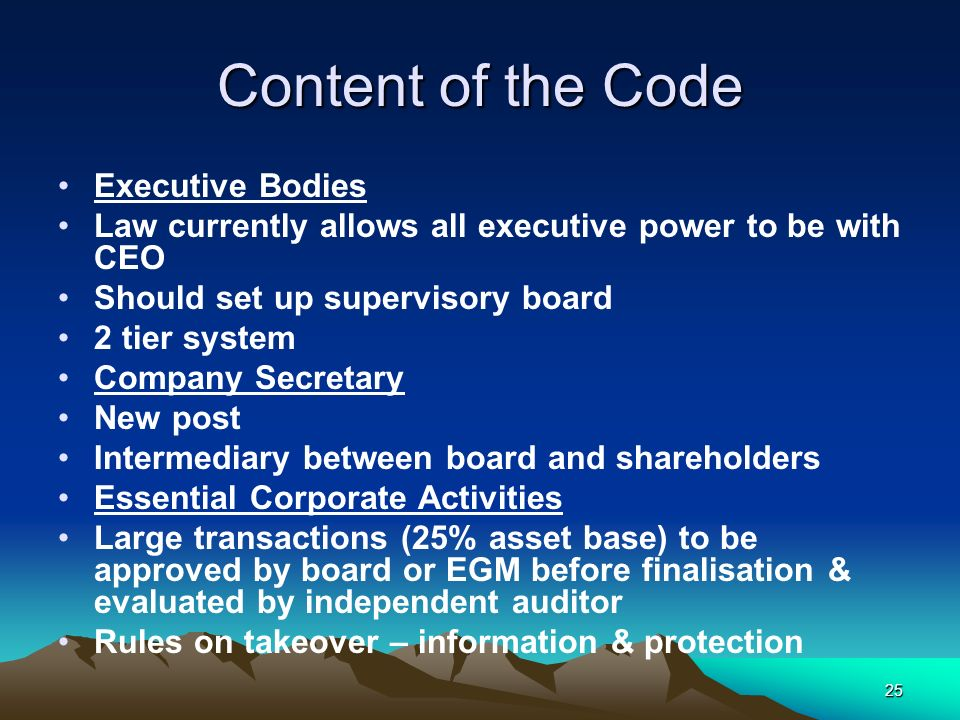 Content of the Code Executive Bodies