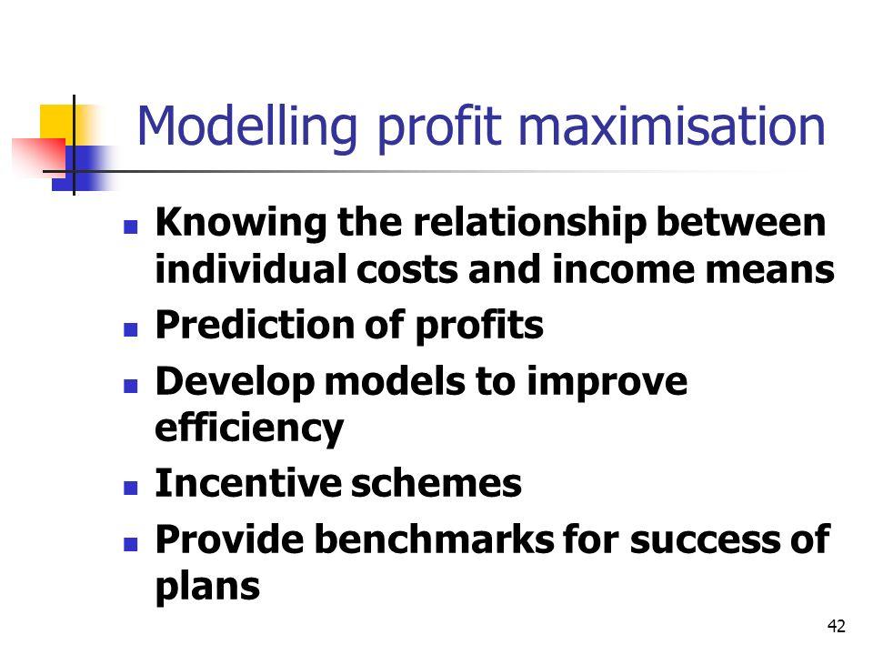 Modelling profit maximisation