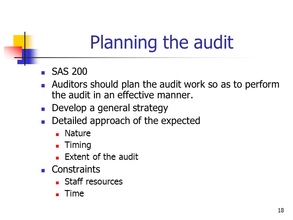 Planning the audit SAS 200. Auditors should plan the audit work so as to perform the audit in an effective manner.