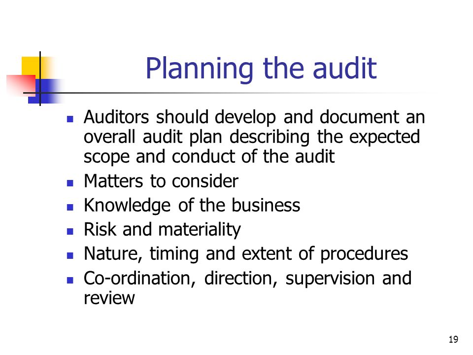 Planning the audit Auditors should develop and document an overall audit plan describing the expected scope and conduct of the audit.