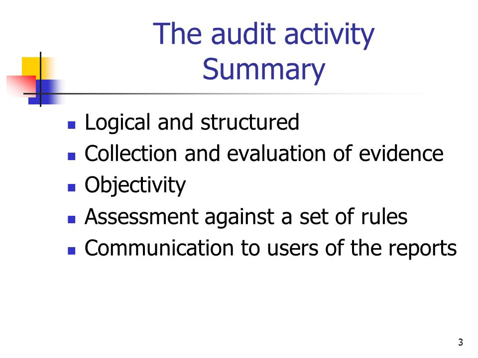 The audit activity Summary