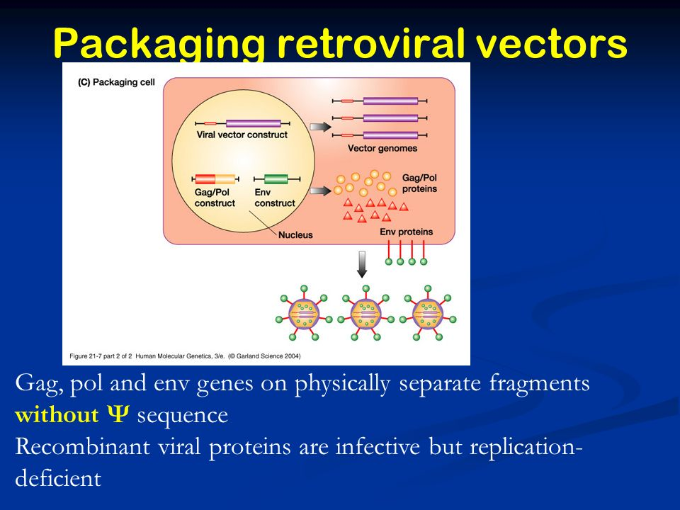 Packaging retroviral vectors