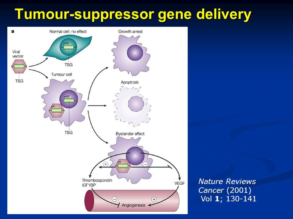 Tumour-suppressor gene delivery