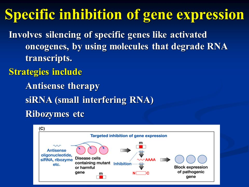 Specific inhibition of gene expression