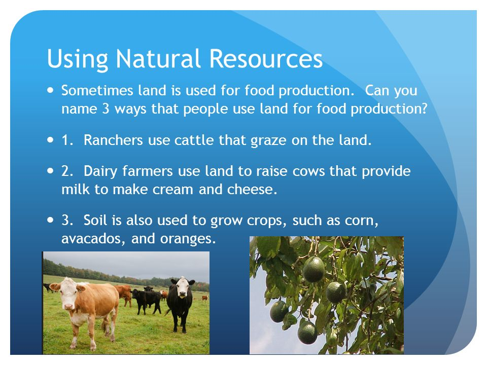 Food webs and natural resources unit 4 pages 196 199 for Natural resources soil uses