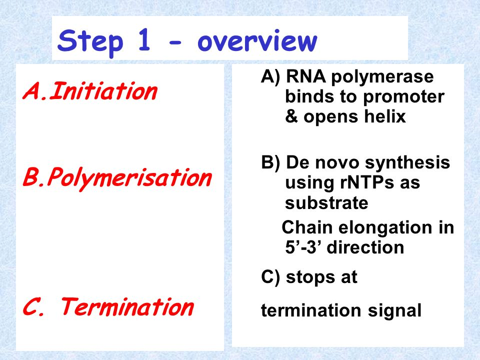 Step 1 - overview Initiation Polymerisation C. Termination
