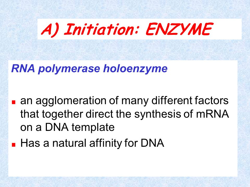 A) Initiation: ENZYME RNA polymerase holoenzyme
