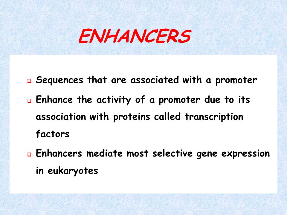 ENHANCERS Sequences that are associated with a promoter