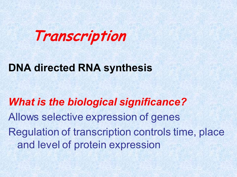 Transcription DNA directed RNA synthesis