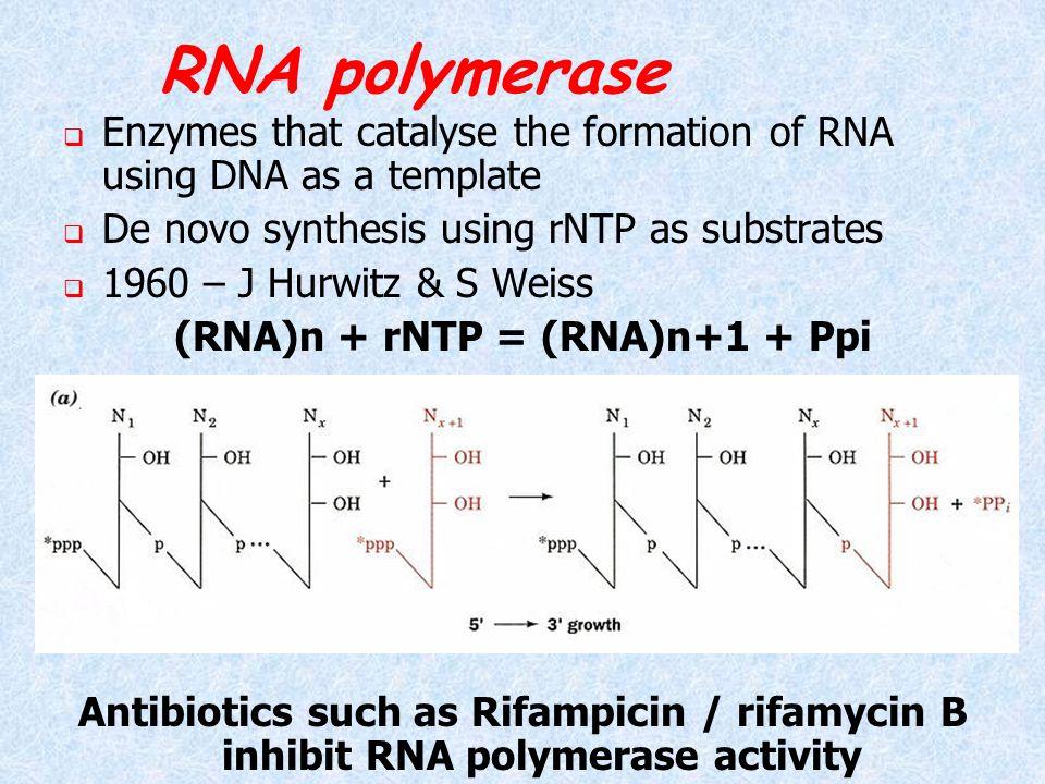 (RNA)n + rNTP = (RNA)n+1 + Ppi