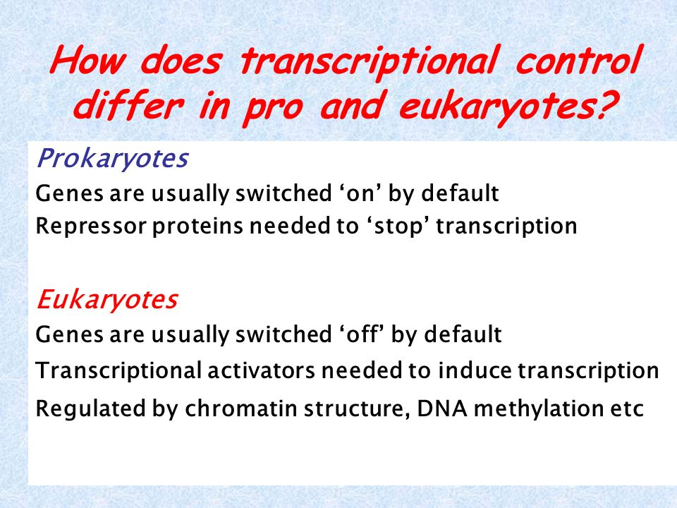 How does transcriptional control differ in pro and eukaryotes
