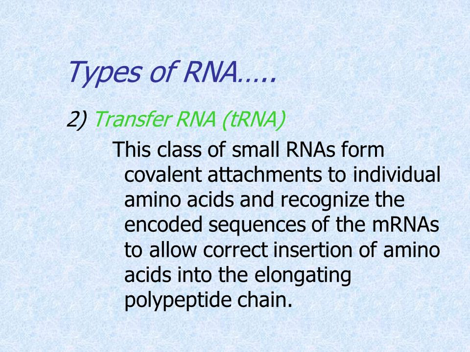 Types of RNA….. 2) Transfer RNA (tRNA)
