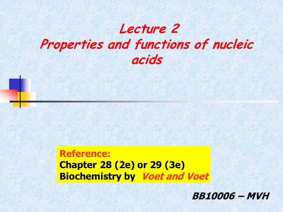 Lecture 2 Properties and functions of nucleic acids