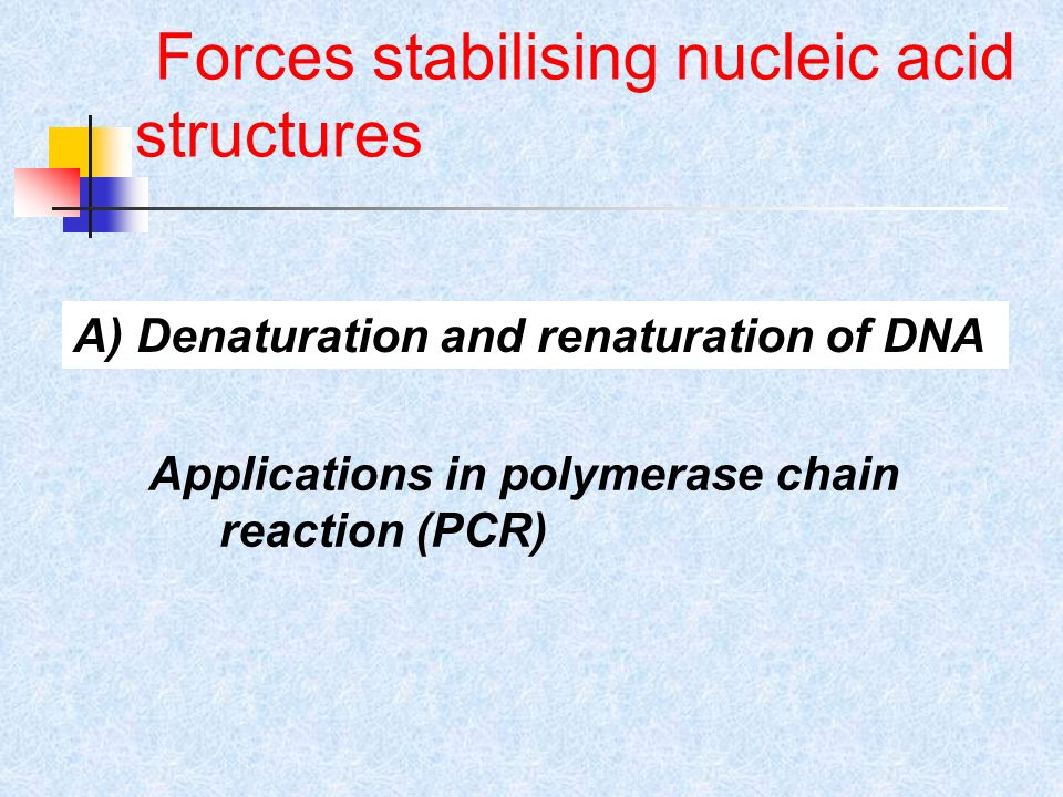 Forces stabilising nucleic acid structures